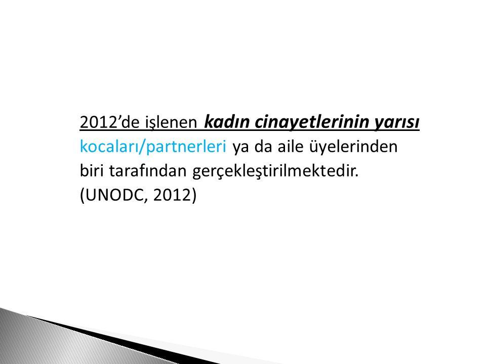 2012'de işlenen kadın cinayetlerinin yarısı kocaları/partnerleri ya da aile üyelerinden biri tarafından gerçekleştirilmektedir. (UNODC, 2012)