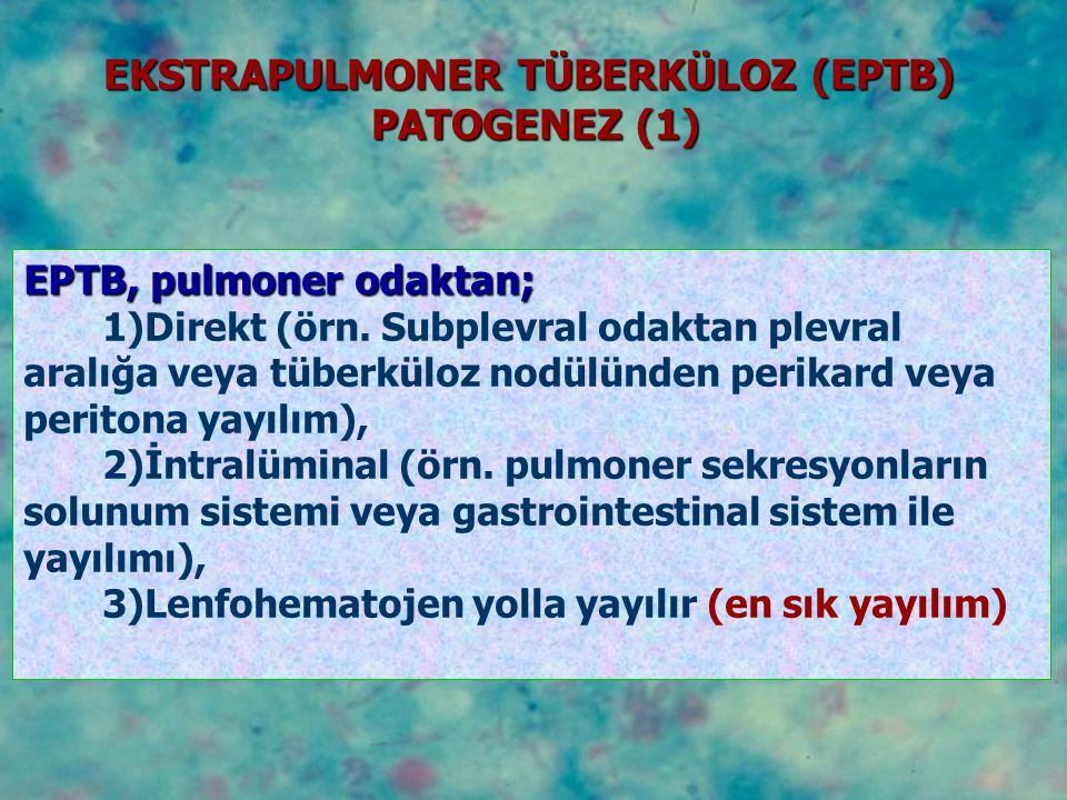 EPTB, pulmoner odaktan; 1)Direkt (örn. Subplevral odaktan plevral aralığa veya tüberküloz nodülünden perikard veya peritona yayılım), 2)İntralüminal (