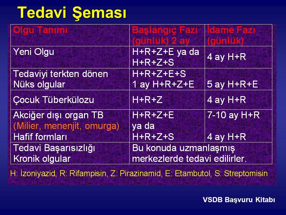 VSDB Başvuru Kitabı Tedavi Şeması