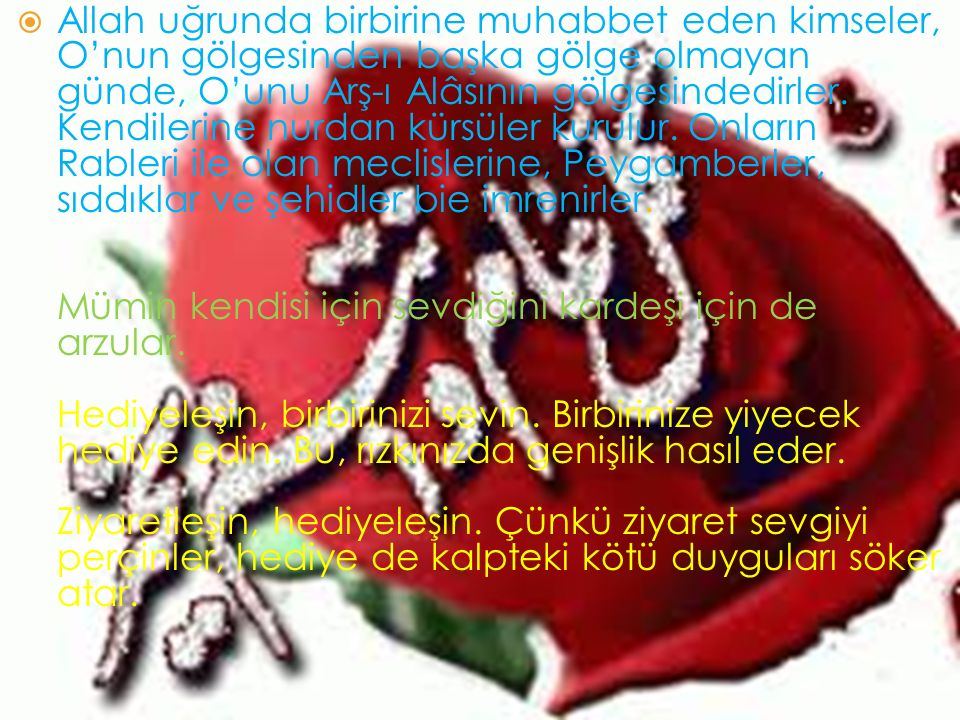  Allah uğrunda birbirine muhabbet eden kimseler, O'nun gölgesinden başka gölge olmayan günde, O'unu Arş-ı Alâsının gölgesindedirler. Kendilerine nurd
