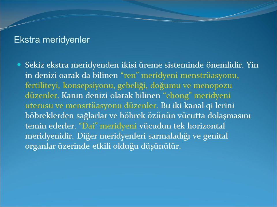 """Ekstra meridyenler Sekiz ekstra meridyenden ikisi üreme sisteminde önemlidir. Yin in denizi oarak da bilinen """"ren"""" meridyeni menstrüasyonu, fertilitey"""