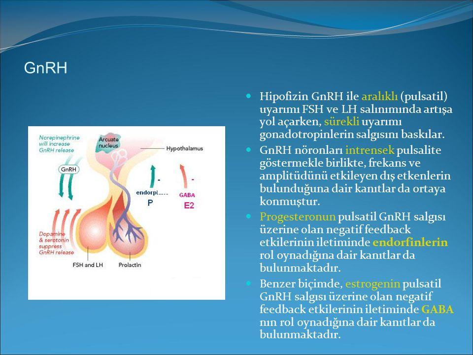 GnRH Hipofizin GnRH ile aralıklı (pulsatil) uyarımı FSH ve LH salınımında artışa yol açarken, sürekli uyarımı gonadotropinlerin salgısını baskılar. Gn