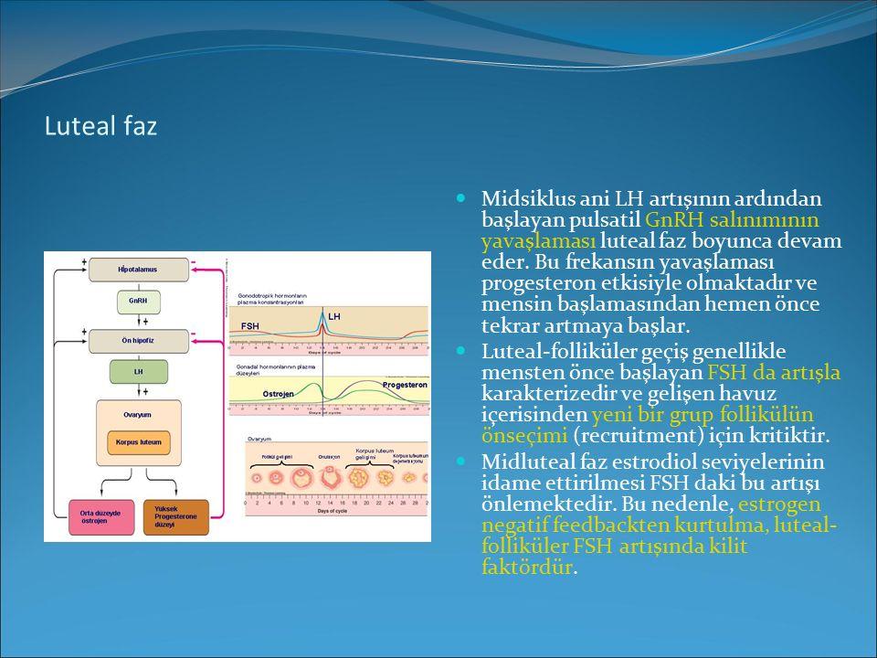 Luteal faz Midsiklus ani LH artışının ardından başlayan pulsatil GnRH salınımının yavaşlaması luteal faz boyunca devam eder. Bu frekansın yavaşlaması