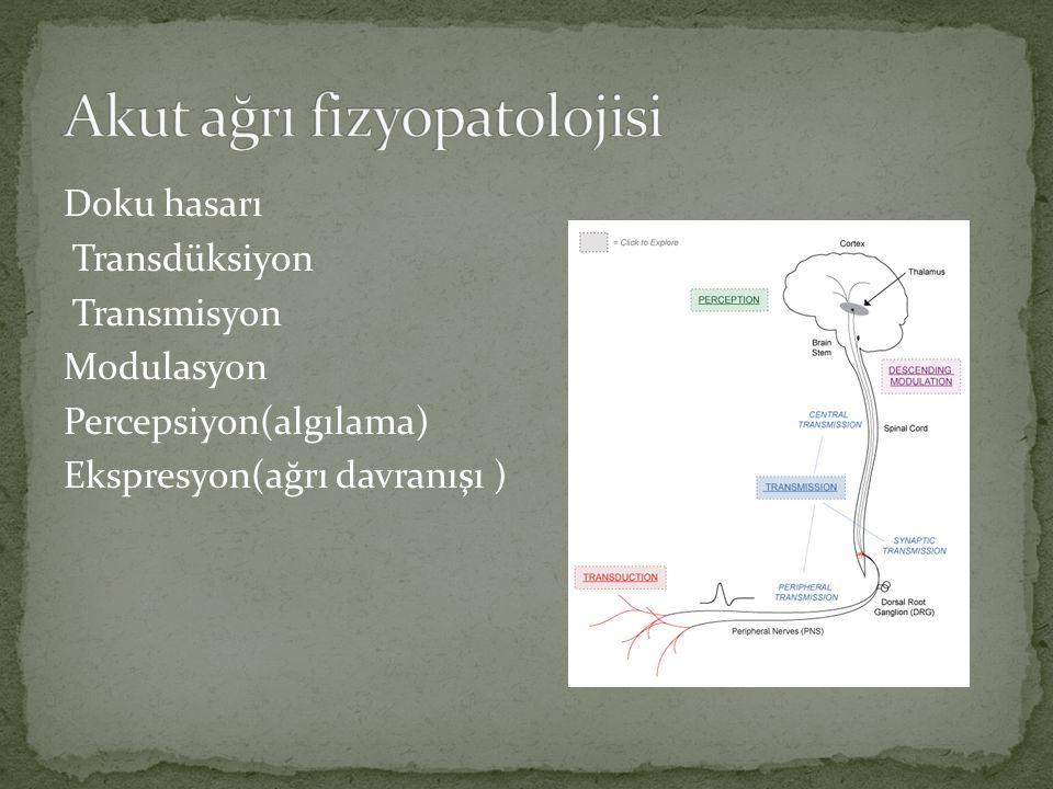 1)nöropatik ağrı(ağrı yollarında hasar) 2)nöroplastik ağrı(OA) 3)yaygın kronik ağrı; fibromyalji, kronik bel ağrısı(doku hasarı saptanmayan) 4)psikojenik ağrı 5)rekküran, epizodik(trigeminal nöralji, migren)
