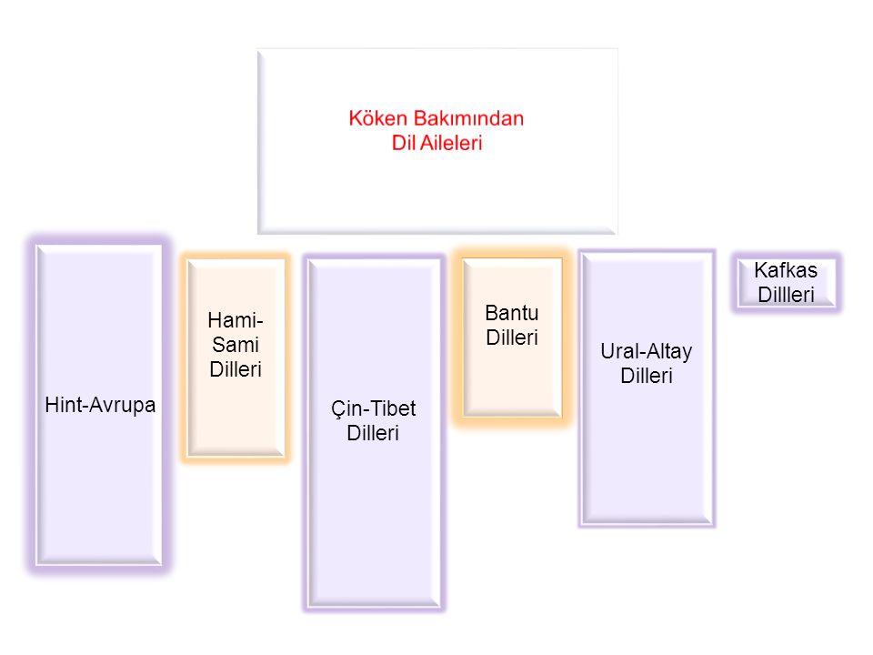 Hint-Avrupa Hami- Sami Dilleri Çin-Tibet Dilleri Bantu Dilleri Ural-Altay Dilleri Kafkas Dillleri