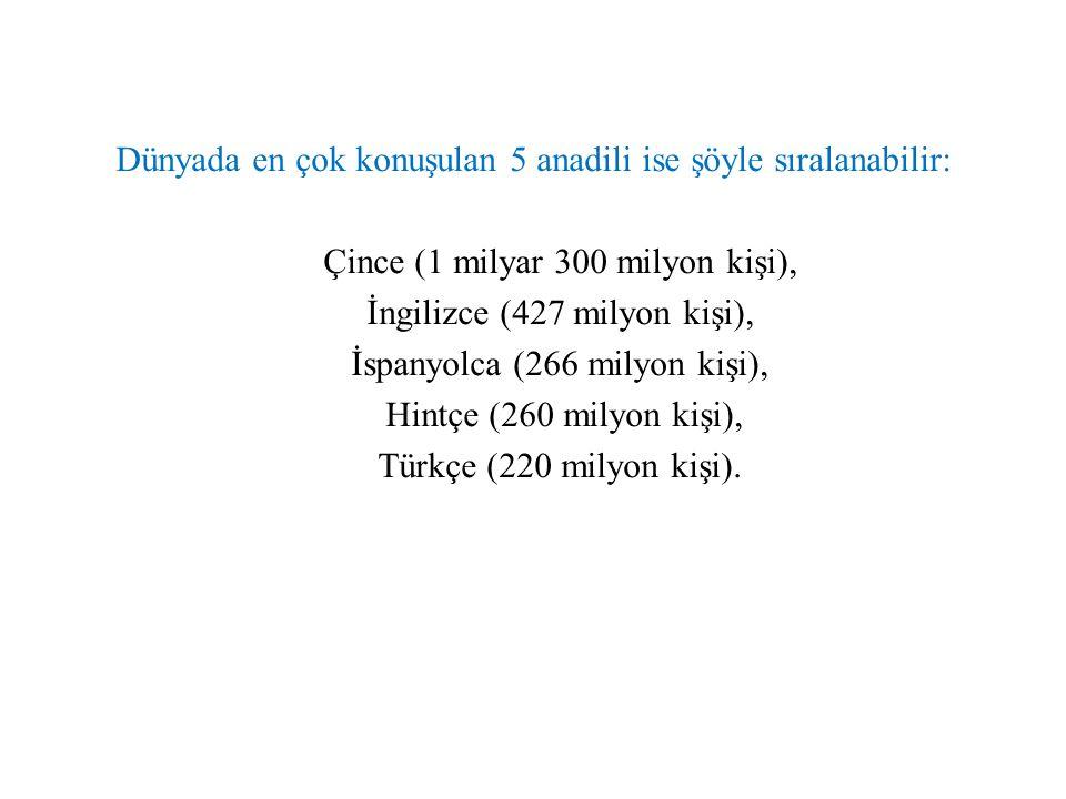 TÜRKİYE'DEKİ ALTAYİSTLER Ahmet Temir, Osman Nedim Tuna, Talat Tekin, Tuncer Gülensoy Türkiye'de Altayistlikle ilgilenen bilim adamlarıdır.