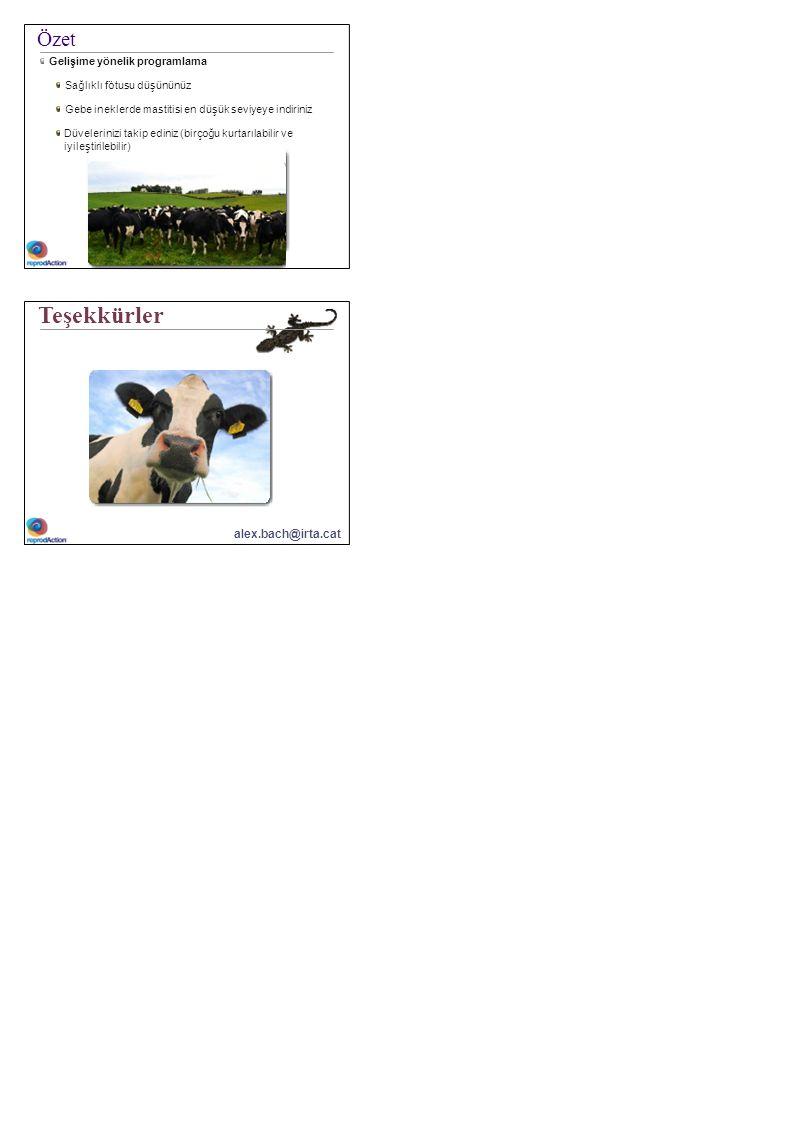 Özet Gelişime yönelik programlama Sağlıklı fötusu düşününüz Gebe ineklerde mastitisi en düşük seviyeye indiriniz Düvelerinizi takip ediniz (birçoğu ku