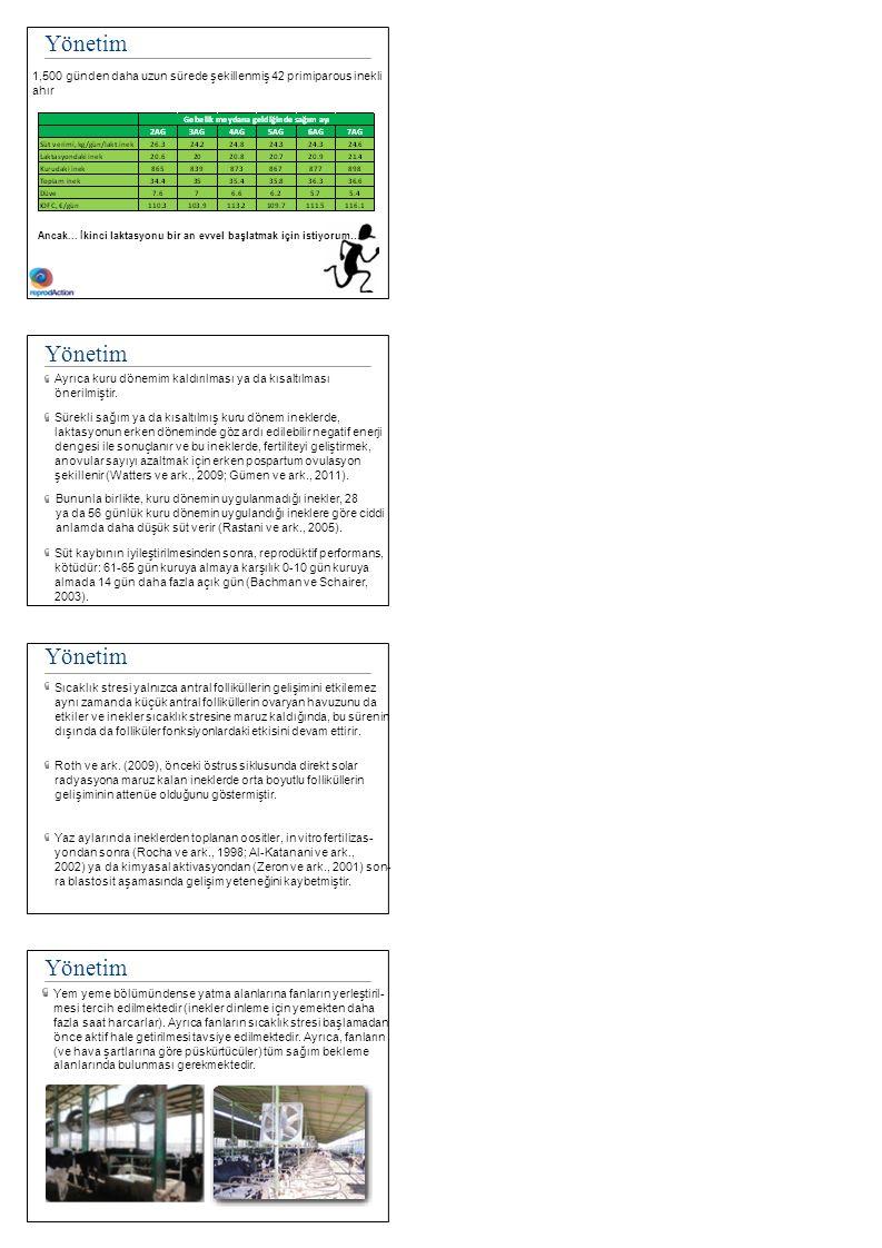 Pre-Partum Besleme ABD'de, 5,700 inekten toplanan veri: Sağlık durumuGebe (%)Gebelik kaybı (%) Sağlıklı51.48.9 1 hastalık vakası43.313.9 > 1 hastalık vakası34.715.8 Hastalık tipi Güç doğum40.315.9 Metritis37.811.3 Endometritis38.715.1 Hipokalsemi39.818.0 Mastitis39.419.8 Ketozis28.814.6 Topallık32.426.7 Pnömoni36.716.7 Santos ve ark., 2010 Pre-Partum Beslenme Huzzey ve ark., 2007 Pre-Partum Besleme Castro ve ark., 2012 Pre-Partum Besleme Grum ve ark., (1996) kuru dönemde yüksek yağ diyeti ile beslenen İneklerde doğumdan sonra yüzdenin düştüğünü rapor etmiş ve Friggens ve ark.