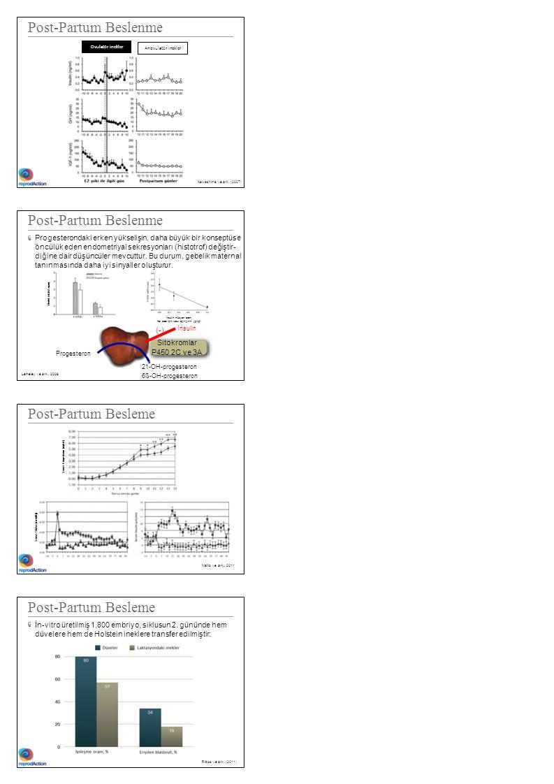 Post-Partum Beslenme Kawashima ve ark. (2007) Post-Partum Beslenme Progesterondaki erken yükselişin, daha büyük bir konseptüse öncülük eden endometriy
