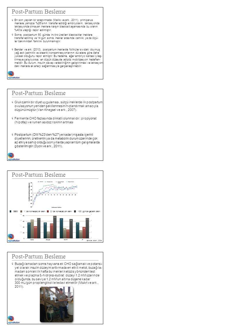 Post-Partum Besleme En son yapılan bir araştırmada (Maillo ve ark., 2011), primiparus ineklere yalnızca %26'sının transfer edildiği embriyoların, lakt