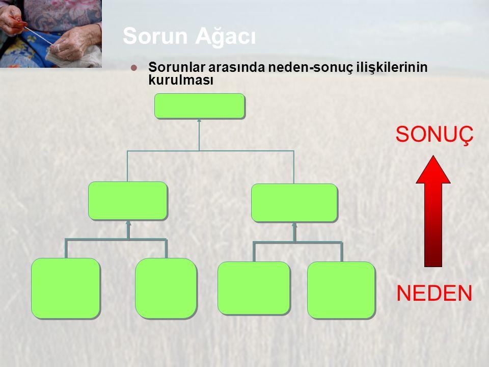 Sorun Ağacı Sorunlar arasında neden-sonuç ilişkilerinin kurulması NEDEN SONUÇ