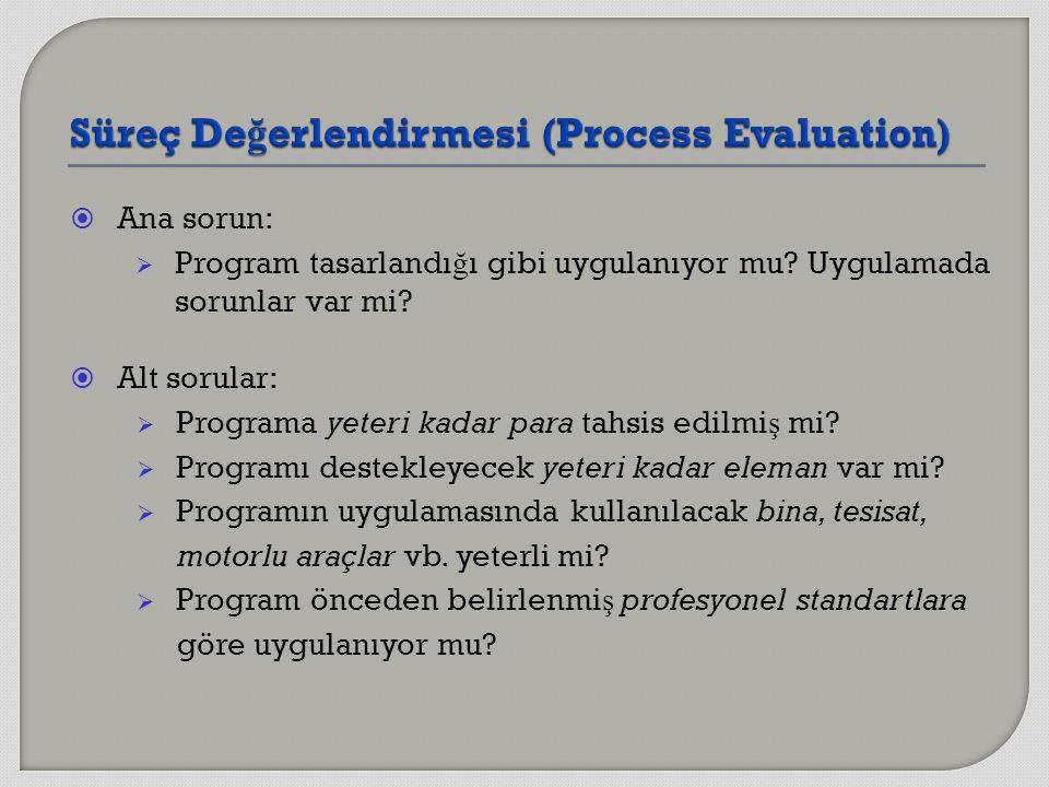  Ana sorun:  Program tasarlandı ğ ı gibi uygulanıyor mu? Uygulamada sorunlar var mi?  Alt sorular:  Programa yeteri kadar para tahsis edilmi ş mi?