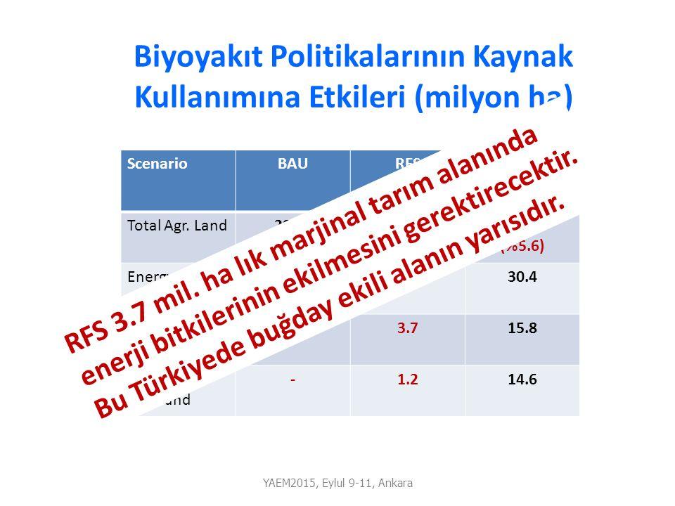 Biyoyakıt Politikalarının Kaynak Kullanımına Etkileri (milyon ha) ScenarioBAURFSLCFS Total Agr. Land295.3301.7 (%2.2) 311.8 (%5.6) Energy Crops-4.930.