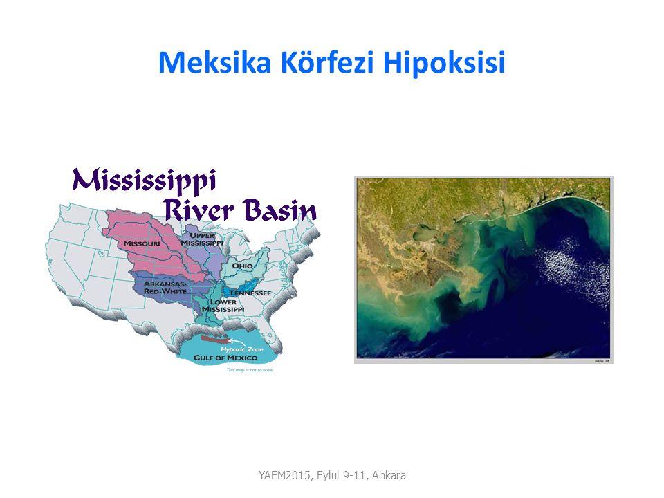 Meksika Körfezi Hipoksisi YAEM2015, Eylul 9-11, Ankara