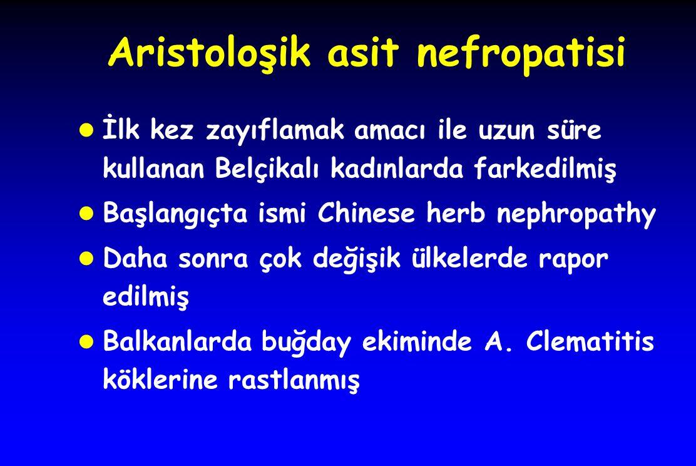 Aristoloşik asit nefropatisi l İlk kez zayıflamak amacı ile uzun süre kullanan Belçikalı kadınlarda farkedilmiş l Başlangıçta ismi Chinese herb nephropathy l Daha sonra çok değişik ülkelerde rapor edilmiş l Balkanlarda buğday ekiminde A.