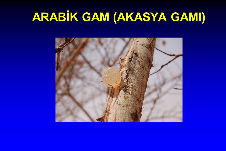 ARABİK GAM (AKASYA GAMI)