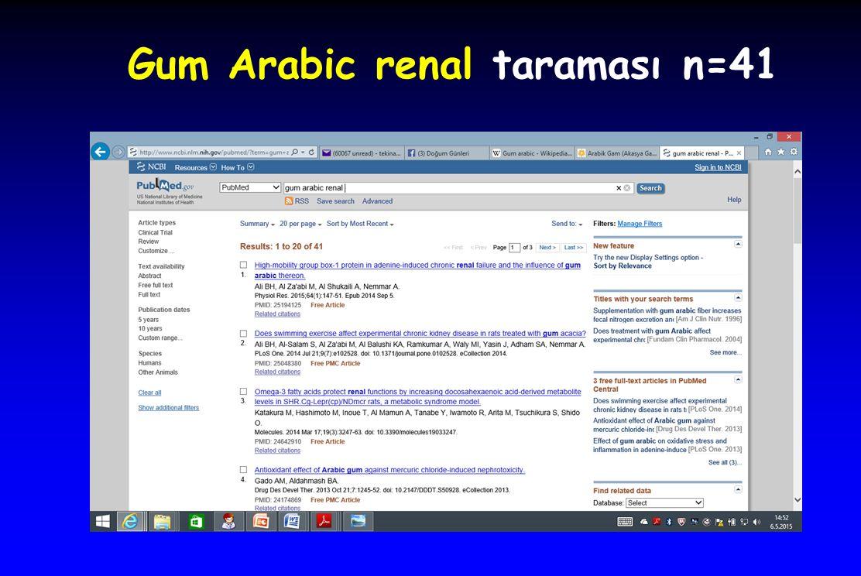 Gum Arabic renal taraması n=41