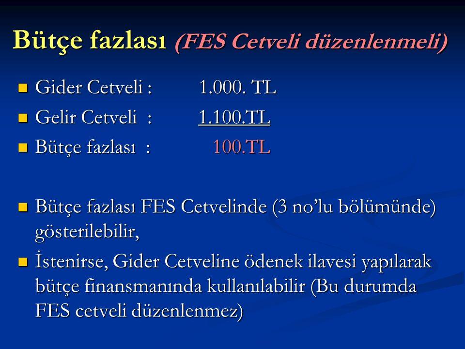 Bütçe fazlası (FES Cetveli düzenlenmeli) Bütçe fazlası (FES Cetveli düzenlenmeli) Gider Cetveli : 1.000. TL Gider Cetveli : 1.000. TL Gelir Cetveli :