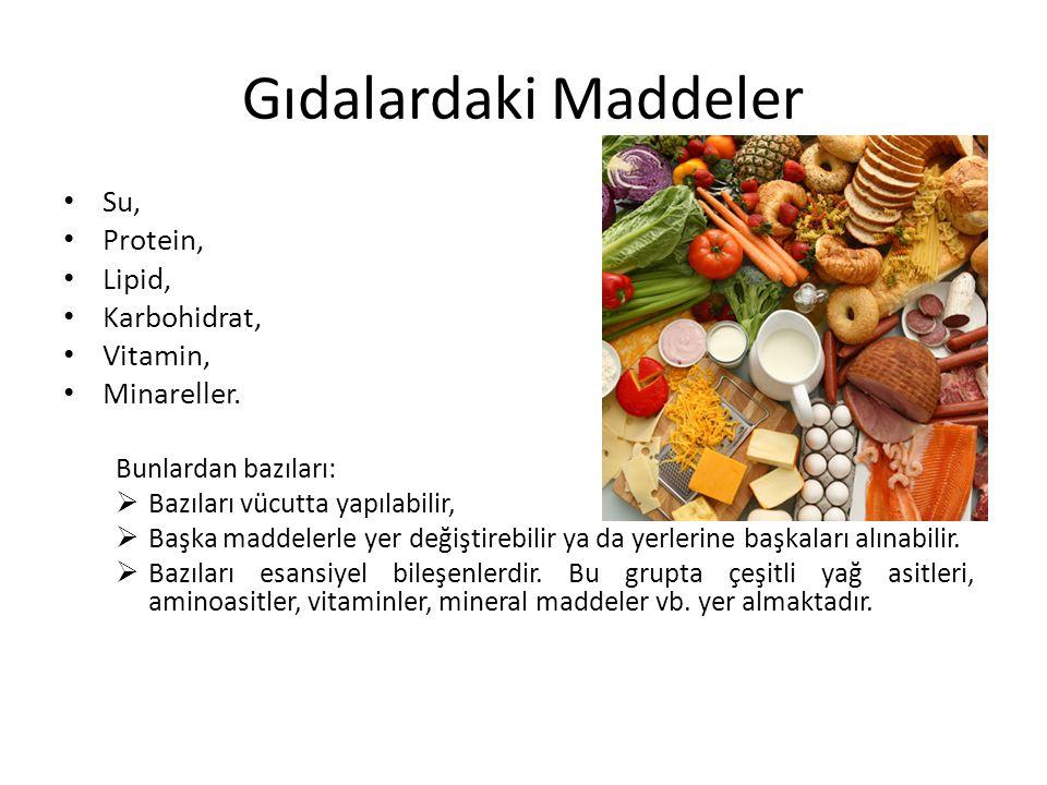Gıdalardaki Maddeler Su, Protein, Lipid, Karbohidrat, Vitamin, Minareller. Bunlardan bazıları:  Bazıları vücutta yapılabilir,  Başka maddelerle yer