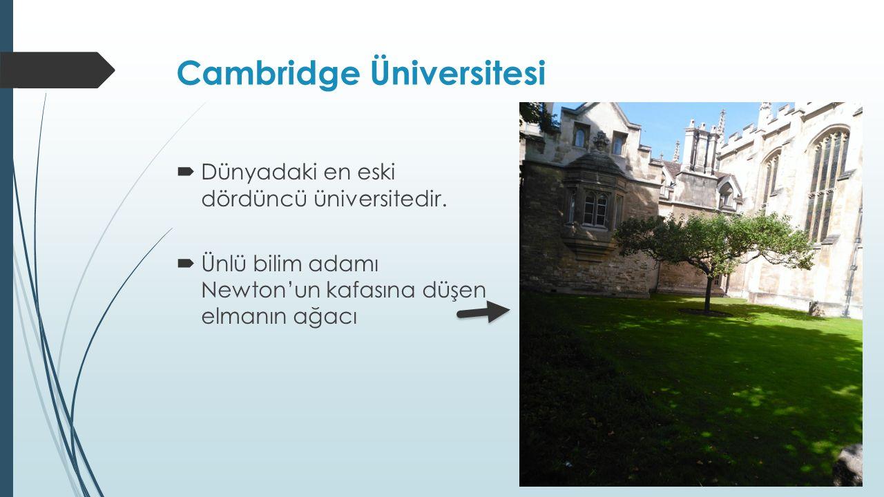 Cambridge Üniversitesi  Dünyadaki en eski dördüncü üniversitedir.