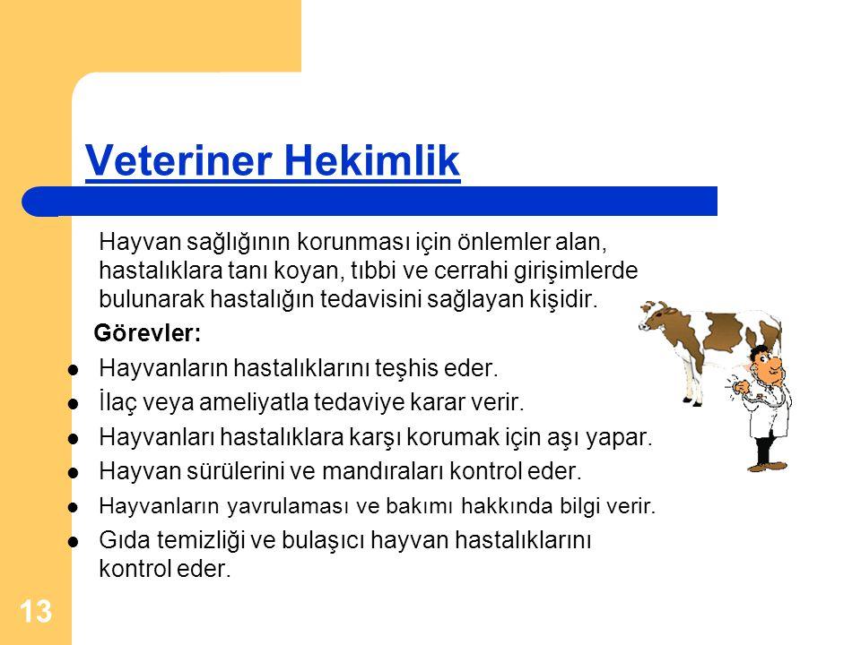 13 Veteriner Hekimlik Hayvan sağlığının korunması için önlemler alan, hastalıklara tanı koyan, tıbbi ve cerrahi girişimlerde bulunarak hastalığın teda
