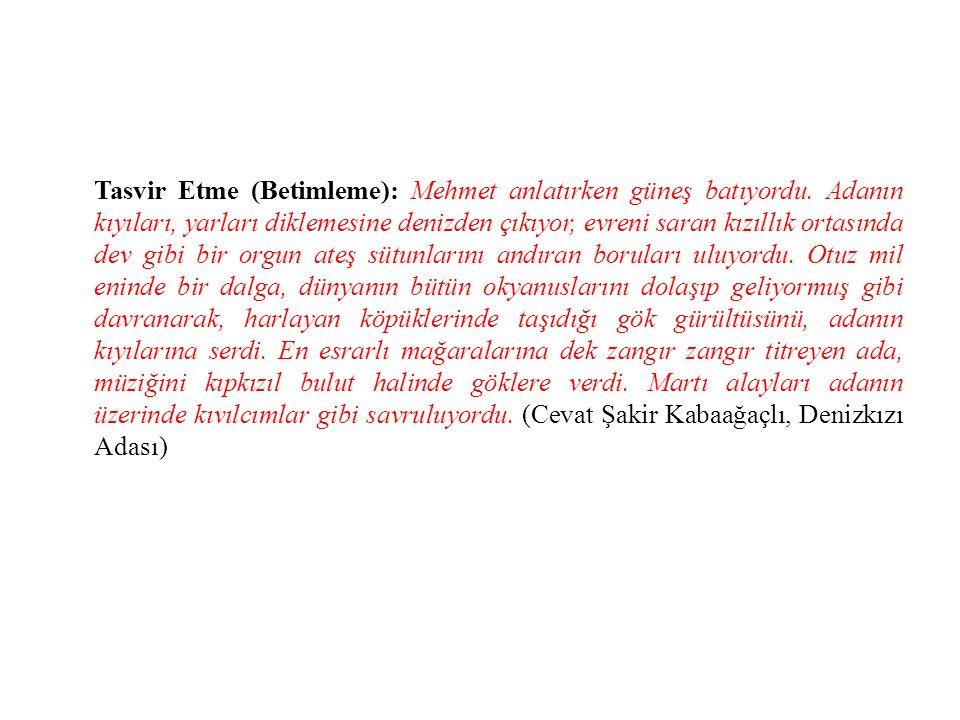 Tasvir Etme (Betimleme): Mehmet anlatırken güneş batıyordu.