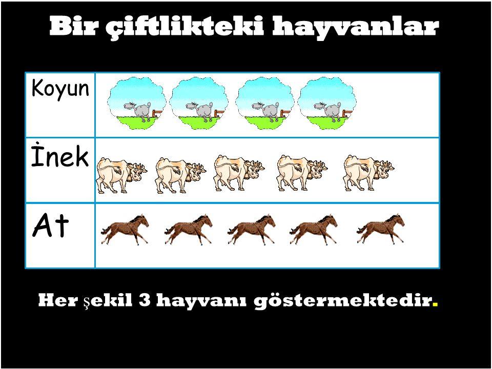 At İnek Koyun Her ş ekil 3 hayvanı göstermektedir.