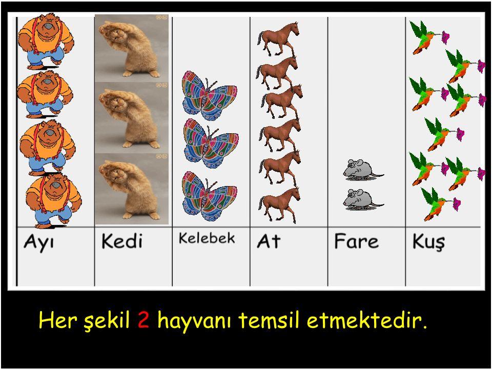 Her şekil 2 hayvanı temsil etmektedir.