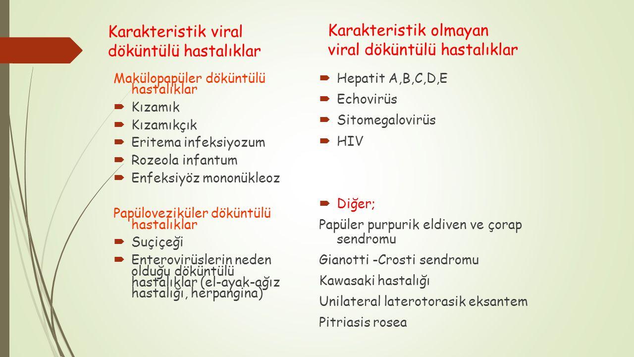 Makülopapüler döküntülü hastalıklar  Kızamık  Kızamıkçık  Eritema infeksiyozum  Rozeola infantum  Enfeksiyöz mononükleoz Papüloveziküler döküntül