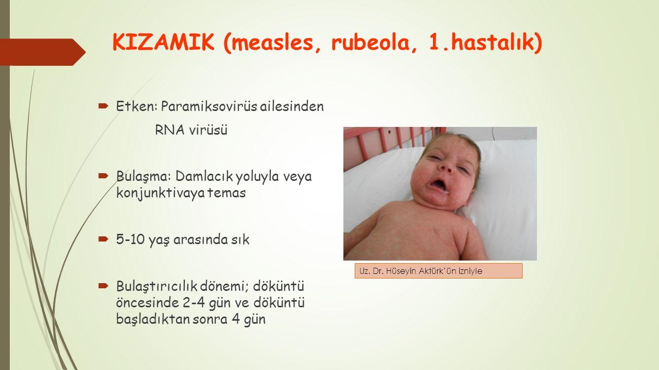 KIZAMIK (measles, rubeola, 1.hastalık)  Etken: Paramiksovirüs ailesinden RNA virüsü  Bulaşma: Damlacık yoluyla veya konjunktivaya temas  5-10 yaş a