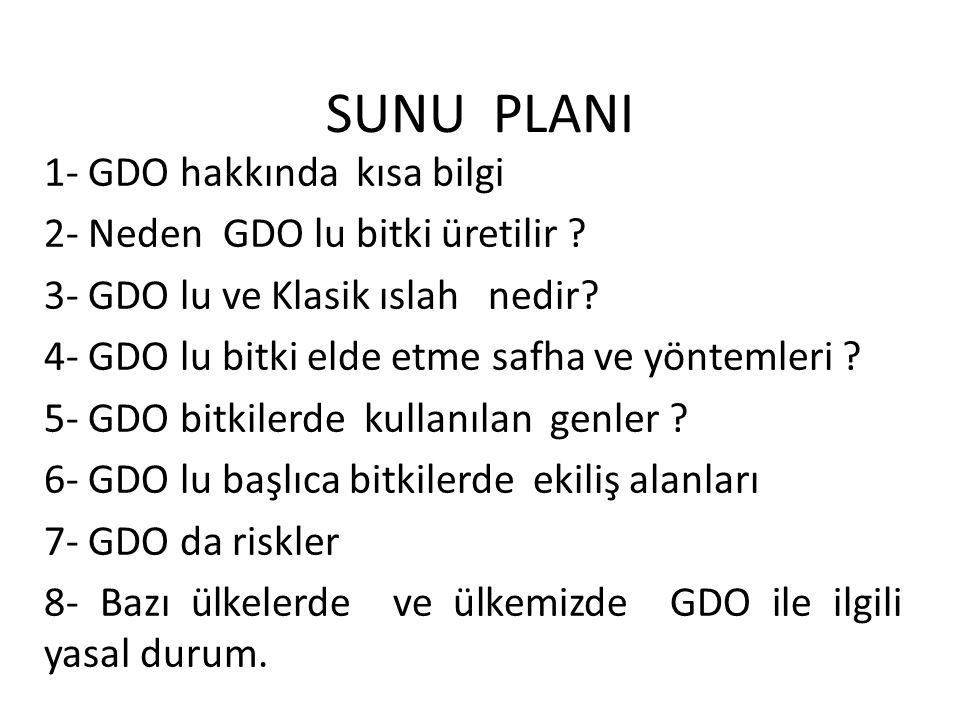 SUNU PLANI 1- GDO hakkında kısa bilgi 2- Neden GDO lu bitki üretilir ? 3- GDO lu ve Klasik ıslah nedir? 4- GDO lu bitki elde etme safha ve yöntemleri