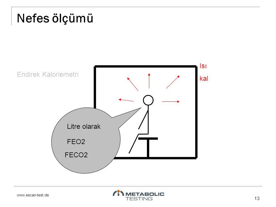 www.escan-test.de 13 Nefes ölçümü Isı kal Litre olarak FEO2 FECO2 Endirek Kaloriemetri