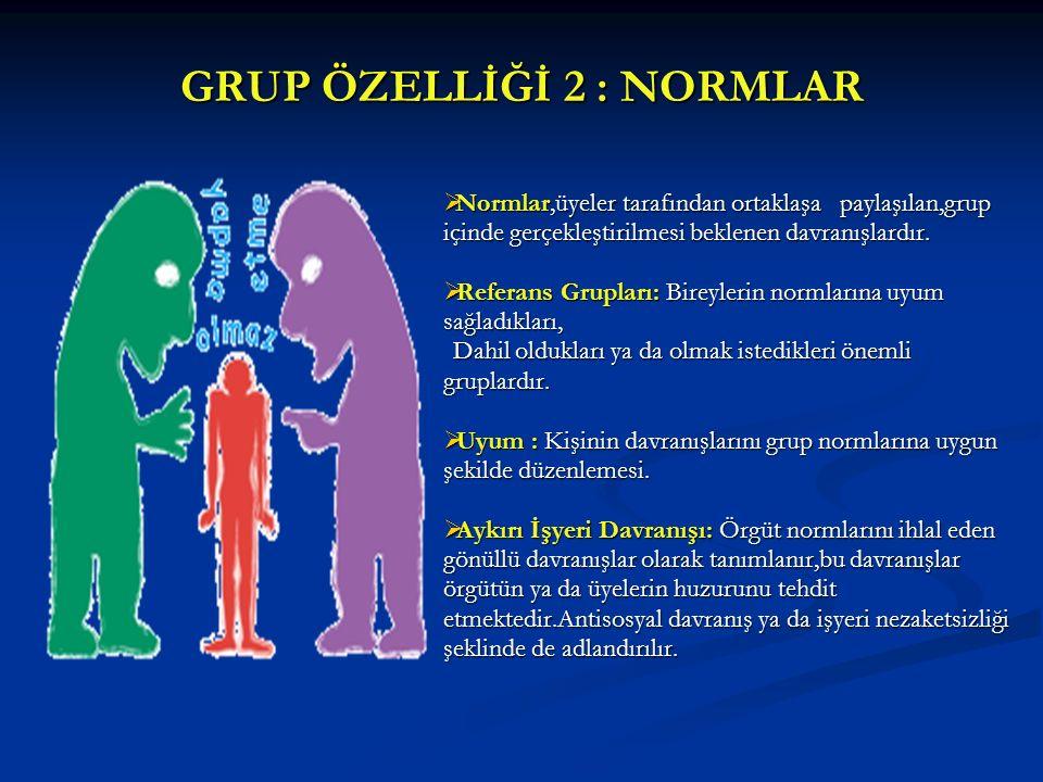 GRUP ÖZELLİĞİ 2 : NORMLAR  Normlar,üyeler tarafından ortaklaşa paylaşılan,grup içinde gerçekleştirilmesi beklenen davranışlardır.  Referans Grupları