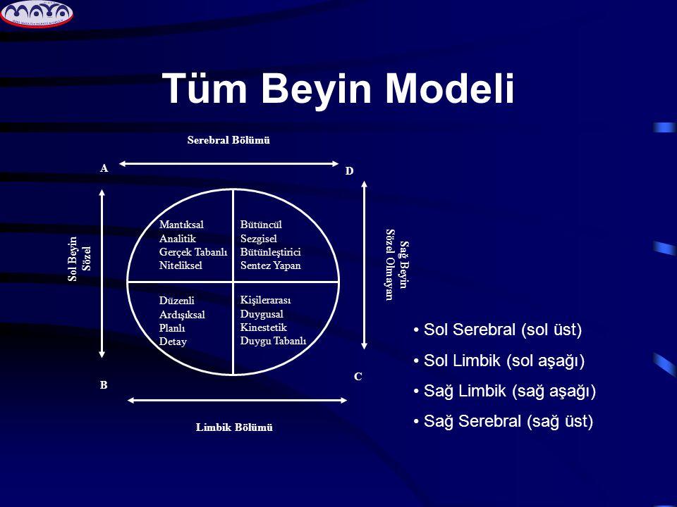 Tüm Beyin Modeli Bütüncül Sezgisel Bütünleştirici Sentez Yapan Kişilerarası Duygusal Kinestetik Duygu Tabanlı Mantıksal Analitik Gerçek Tabanlı Niteli