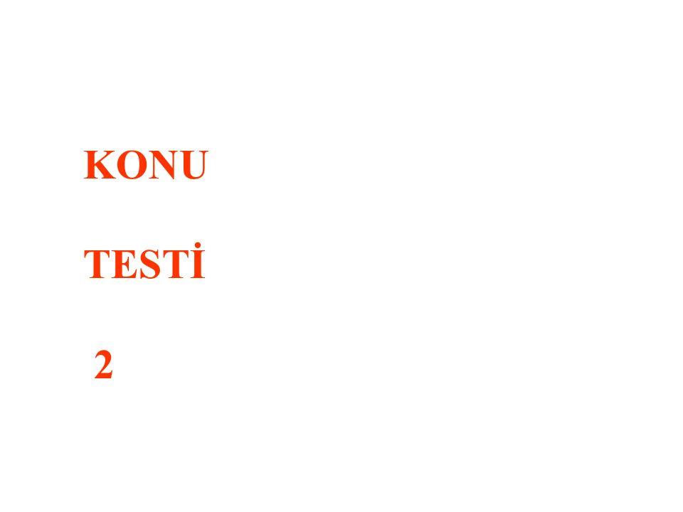 KONU TESTİ 2