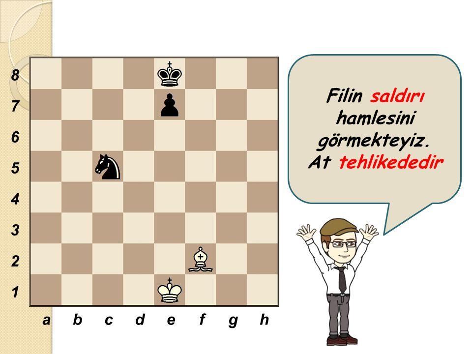 Satranç oyuncularının kendi aralarında boşta veya bedava dedikleri kavramlar vardır.