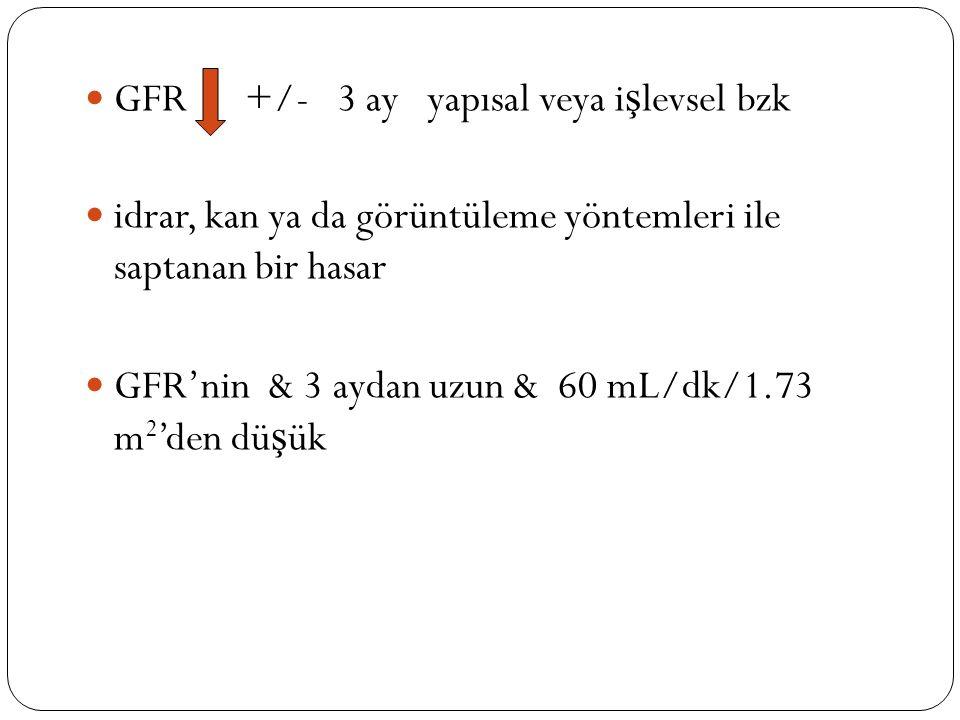 GFR +/- 3 ay yapısal veya i ş levsel bzk idrar, kan ya da görüntüleme yöntemleri ile saptanan bir hasar GFR'nin & 3 aydan uzun & 60 mL/dk/1.73 m 2 'den dü ş ük