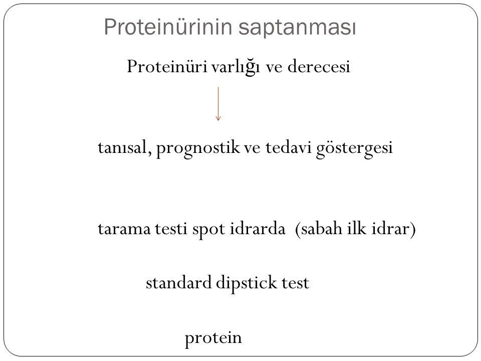 Proteinürinin saptanması Proteinüri varlı ğ ı ve derecesi tanısal, prognostik ve tedavi göstergesi tarama testi spot idrarda (sabah ilk idrar) standard dipstick test protein