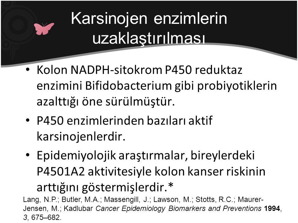 Kolon NADPH-sitokrom P450 reduktaz enzimini Bifidobacterium gibi probiyotiklerin azalttığı öne sürülmüştür. P450 enzimlerinden bazıları aktif karsinoj