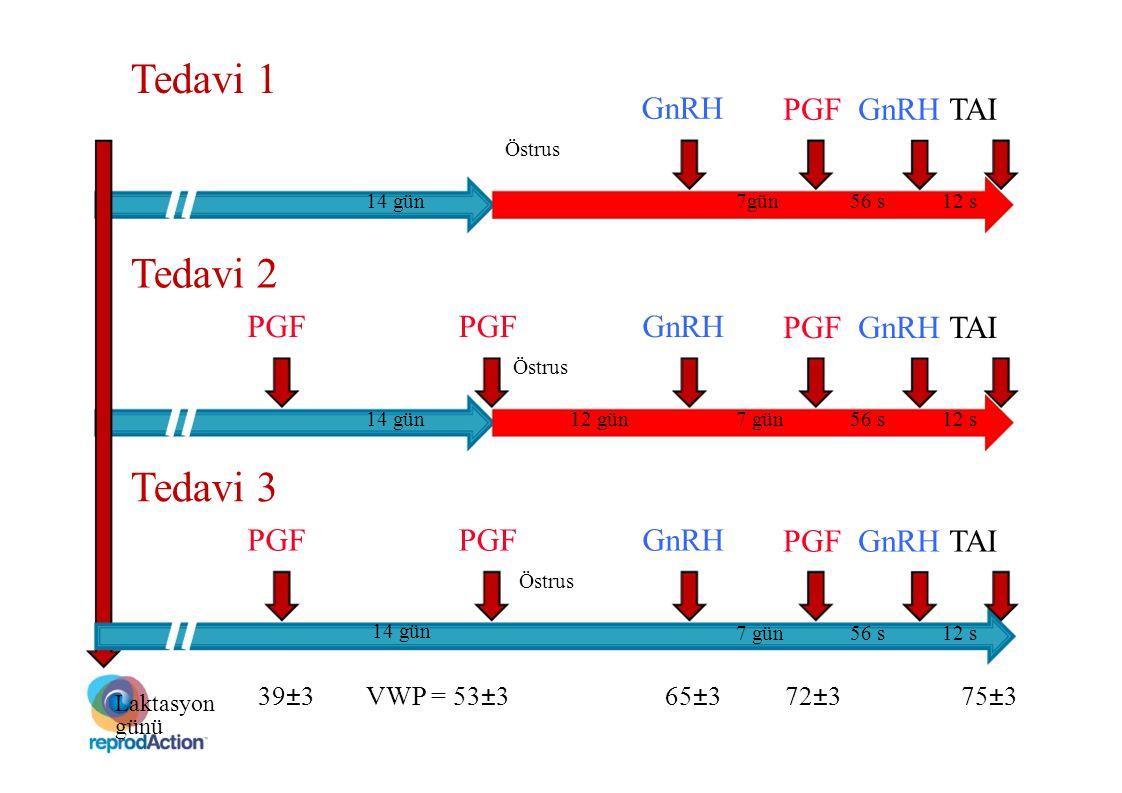 PGF GnRH TAI 14 gün7gün56 s12 s GnRH Östrus Tedavi 1 GnRHPGF PGF GnRH TAI Östrus Tedavi 2 Laktasyon günü 65±372±375±339±3VWP = 53±3 14 gün12 gün7 gün5
