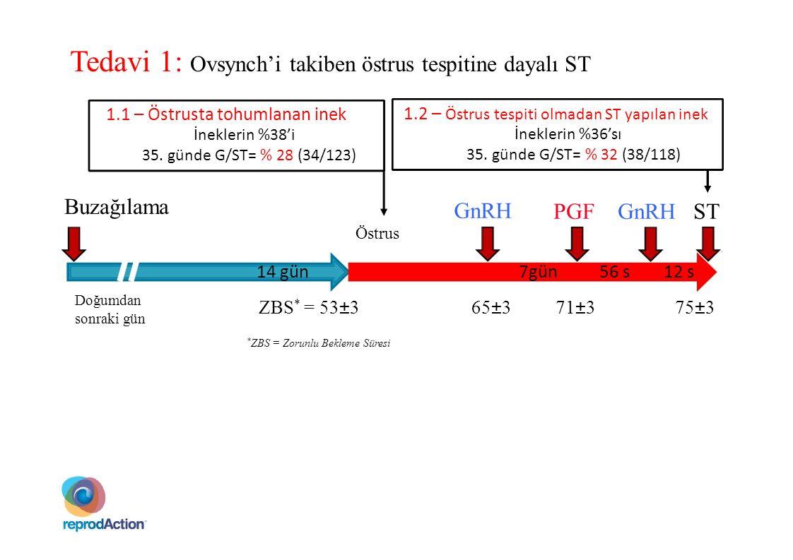 GnRH PGF GnRH ST Buzağılama 14 gün7gün56 s12 s Östrus Tedavi 1: Ovsynch'i takiben östrus tespitine dayalı ST 1.1 – Östrusta tohumlanan inek İneklerin