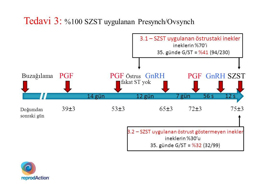 PGF PGF GnRH SZST Buzağılama 7 gün56 s12 s Tedavi 3: %100 SZST uygulanan Presynch/Ovsynch 3.1 – SZST uygulanan östrustaki inekler ineklerin %70'i 35.