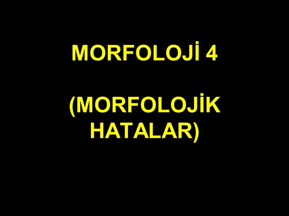 MORFOLOJİ 4 (MORFOLOJİK HATALAR)