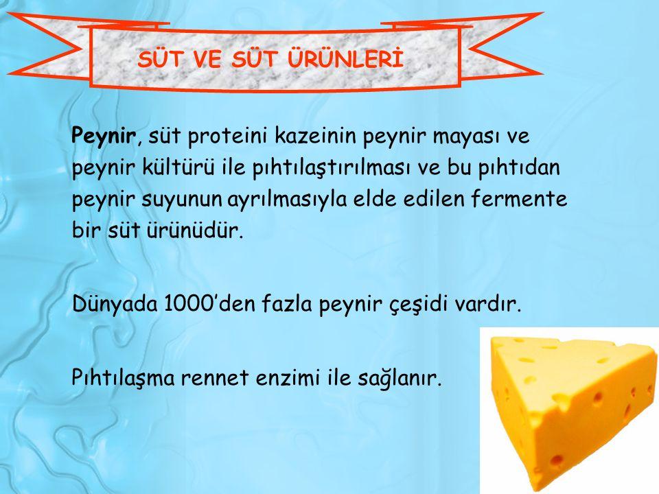 SÜT VE SÜT ÜRÜNLERİ Peynir, süt proteini kazeinin peynir mayası ve peynir kültürü ile pıhtılaştırılması ve bu pıhtıdan peynir suyunun ayrılmasıyla eld