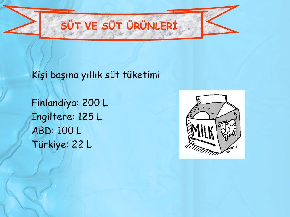 SÜT VE SÜT ÜRÜNLERİ Kişi başına yıllık süt tüketimi Finlandiya: 200 L İngiltere: 125 L ABD: 100 L Türkiye: 22 L