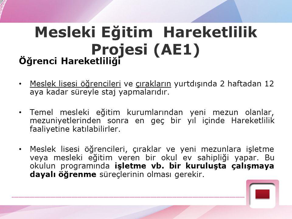 Mesleki Eğitim Hareketlilik Projesi (AE1) Öğrenci Hareketliliği Meslek lisesi öğrencileri ve çırakların yurtdışında 2 haftadan 12 aya kadar süreyle st