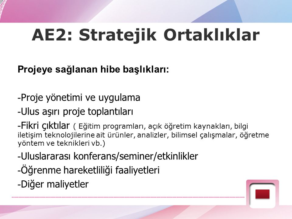 AE2: Stratejik Ortaklıklar Projeye sağlanan hibe başlıkları: - Proje yönetimi ve uygulama - Ulus aşırı proje toplantıları - Fikri çıktılar ( Eğitim pr