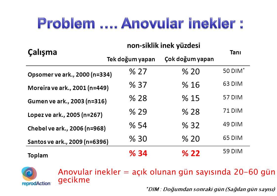 Anovular inek (%) 83.3 (15/18) 0 40 30 20 10 100 90 80 70 60 50 2.75< 2.503.003.25 38.2 (13/34) 34.4 (20/58) 21.8 (24/110) 8.5 (4/47) > 3.25 Vücut kondüsyon skoru ~ 60 DIM Anovular ineklerin %80'i