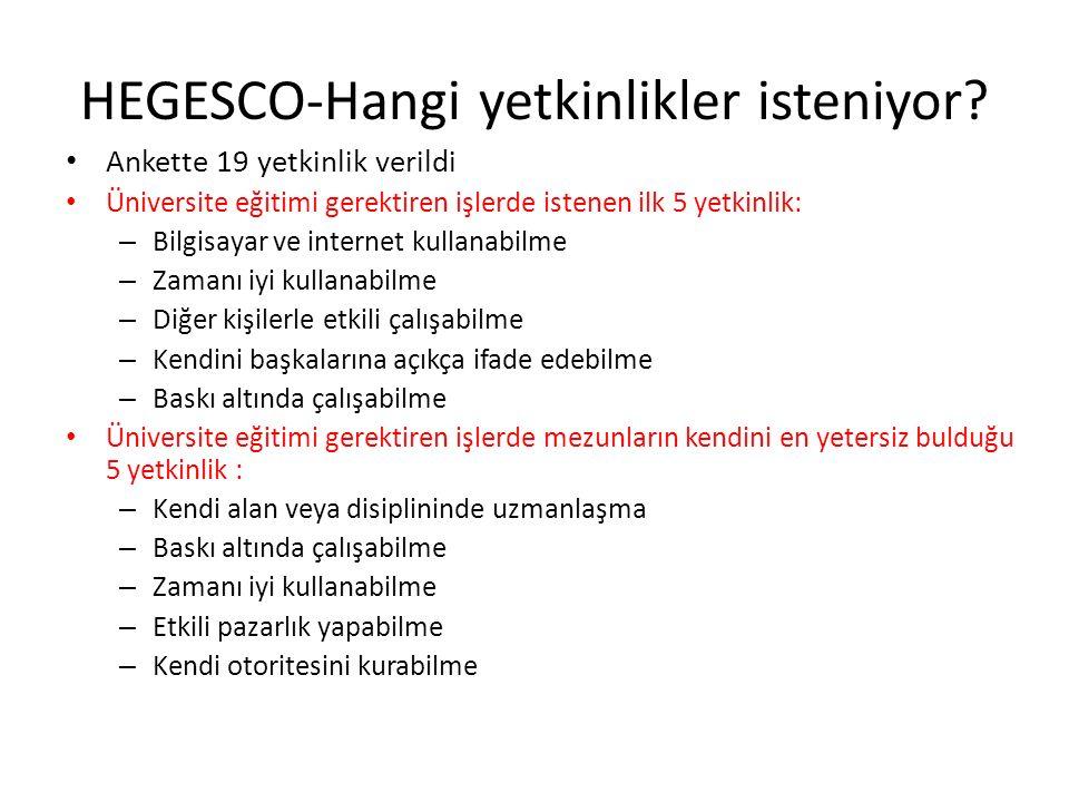 HEGESCO-Hangi yetkinlikler isteniyor.