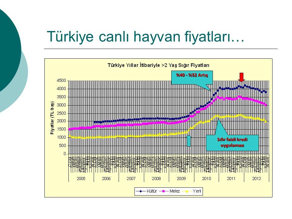 Türkiye canlı hayvan fiyatları… %40 - %52 Artış Sıfır faizli kredi uygulaması